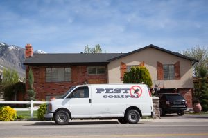 What Are The Benefits Of Pest Control Services?